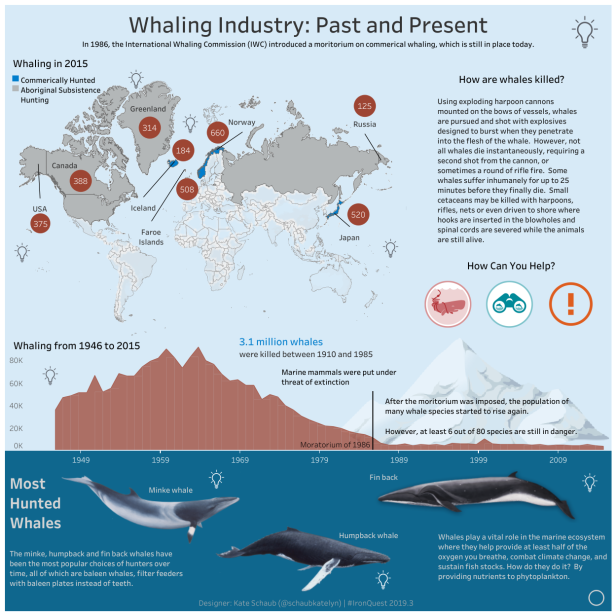 Katelyn - Whaling Industry_ Past and Present